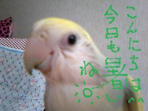 2010_0713_084738ts3m0866