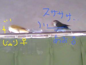 2010_0721_112243ts3m0938
