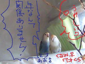 2011_0119_101943ts3m1600
